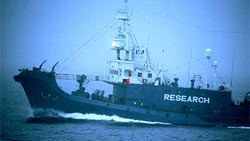 Baleniera giapponese